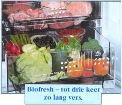 Frigoríficos con Bio Fresh